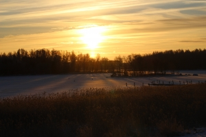wintery-sunrise-1445001-2-m